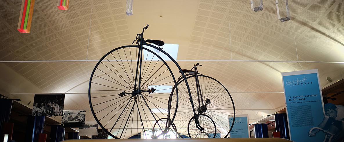 Bici ruote grosse